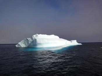 iceberg in davis strait