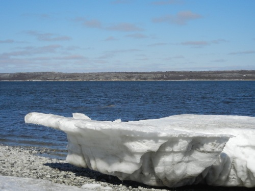 A piece of ice rots in the spring sun near the Koksoak River. (PHOTO BY JANE GEORGE)