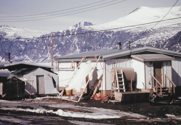 A polar bear skin is stretched out against the side of a house in Pangnirtung, May 1993. (PHOTO BY JANE GEORGE)