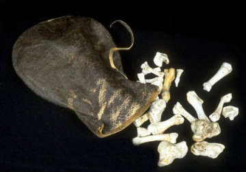These seal bones are similar to the ones which Mitiarjuk used to teach about Inuit culture and language. (PHOTO/ UNIVERSITY OF WATERLOO)