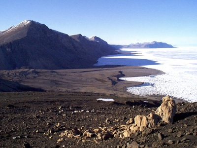 This petrified forest on Ellesmere Island now lies way above sea level. (PHOTO BY JANE GEORGE)