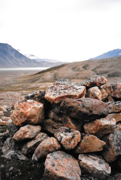 Muskox blind, Tanquary Fiord, Ellesmere Island. (PHOTO BY JANE GEORGE)