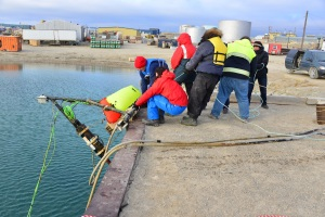 Researchers and community volunteers help pull the ocean observatory out of the water. (PHOTO COURTESY OF OCEANS NETWORKS CANADA)