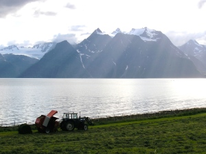 Mountains, fields and fiords, all above the Arctic Circle. (PHOTO BY JANE GEORGE)